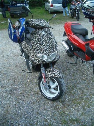 Running leo - oder so - (Motorrad, Optik, Fell)