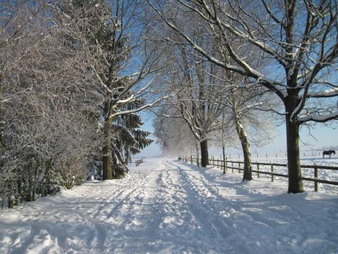 Vorsicht Winterreifenpflicht! - (Gruß, Wünsche)