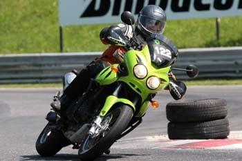 Tiger in Aktion - (Motorrad, Suche, empfehlenswert)