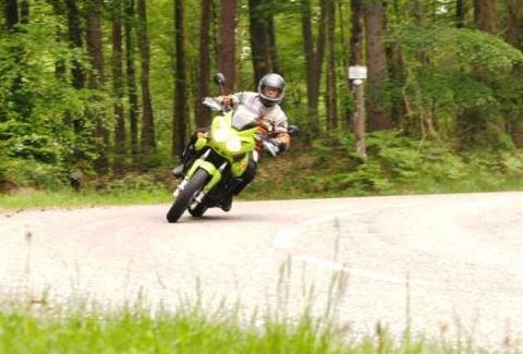 Tiger on Tour - (Motorrad, Suche, empfehlenswert)