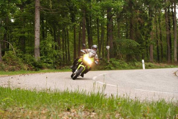 Pfälzer Wald - (Reiseenduro, Tourenmotorrad, großes motorrad)