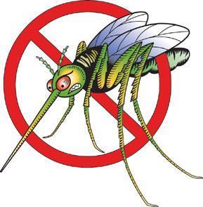 Mücke1 - (Helm, Insekten)