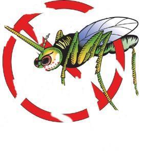 Mücke2 - (Helm, Insekten)