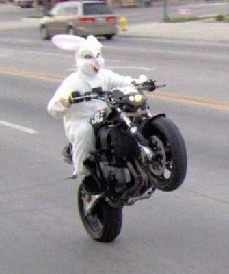 Rabbit-Bike - (Hinterrad, Spur, Hüpfen)