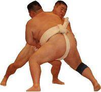 Sumo - (Schutzkleidung, Protektoren)