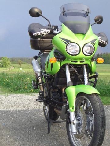 Tiger mit Acerbis Multiplo - (Handschuhe Motorrad Empfehlung, Handschuhe Motorrad Funktionalität, Motorradhandschuhe Empfehlung Frühjahr)