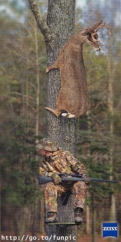 Auf die Bäume,myhardi kommt ! - (Supersportler, Stadtgebrauch)