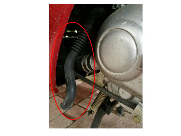 Bild 2 - (Motor, Schlauch, Kymco)