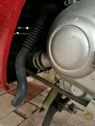 Bild 3 - (Motor, Schlauch, Kymco)