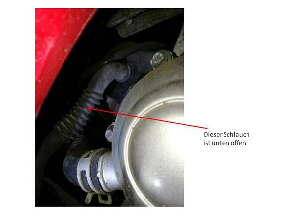 Bild wo der Schlauch an dem einen Ende angeschlossen ist - (Motor, Schlauch, Kymco)
