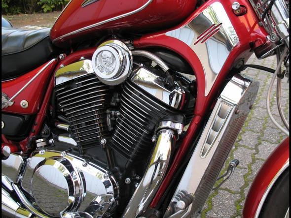 Motor VS800 - (Motorpflege, Motorglanz)
